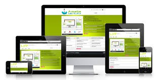 Amelia Island responsive web design